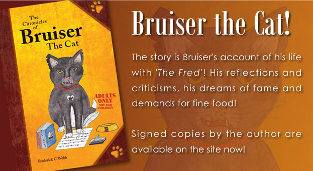 Bruiser the Cat!